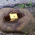 陰陽石…わかる人にはわかる形…